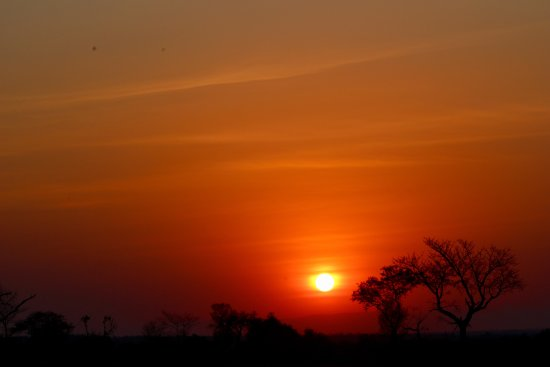 Notten's Bush Camp: We saw the most amazing sunsets daily with a G&T on our sundowners