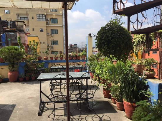 Shree Tibet Family Guest House: Roof top garden area by the top apartment room.