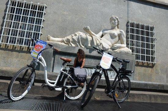 Elerent Torino