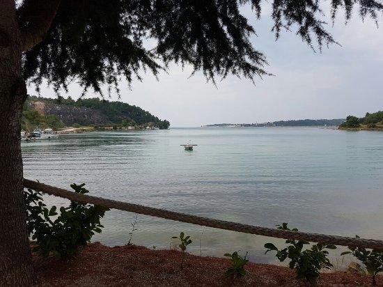 Tar, كرواتيا: 20160915_133431_large.jpg