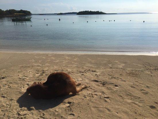 Half Moon Beach: Heaven on Earth