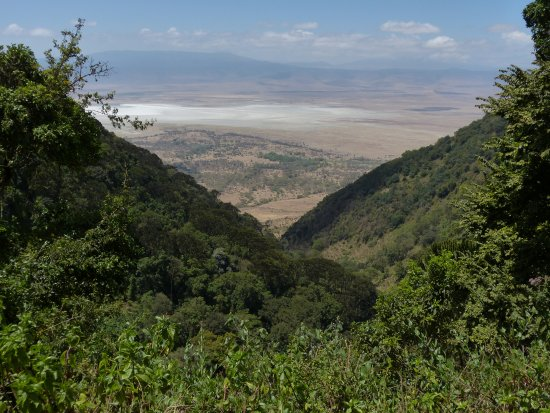 Arusha (região), Tanzânia: Ngorongoro crater from the rim