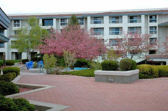 科羅拉多斯普林斯希爾頓逸林飯店
