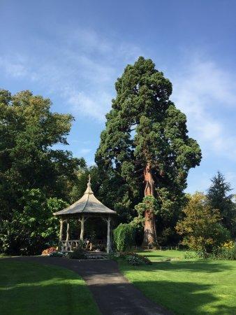 Jardin anglais photo de jardin anglais gen ve tripadvisor for Jardin anglais geneve suisse