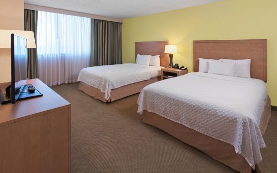 Embassy Suites by Hilton Tampa - Airport/Westshore: 2 Queen Beds