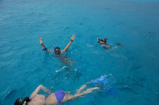 Strike Zone Charters: Snorkeling with Strike Zone in the Atlantic
