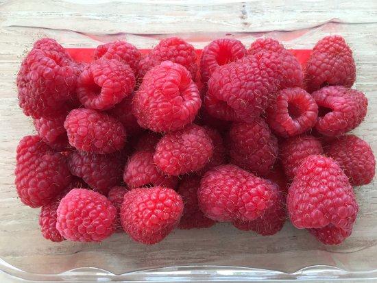Laurencekirk, UK: Homegrown Raspberries