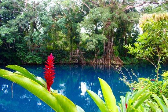 Espiritu Santo, Vanuatu: Teal blue water at Matevulu blue Hole
