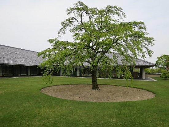 THE SUIBOKU MUSEUM, TOYAMA