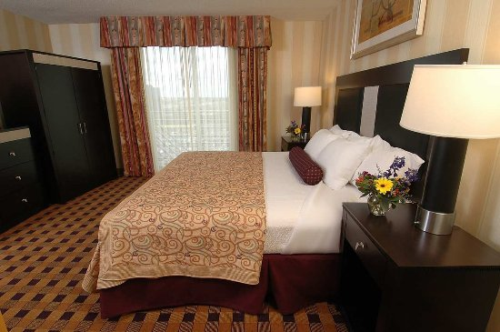 Embassy Suites by Hilton Minneapolis - Airport: Accessible Suite Bedroom