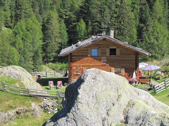 Tyrol du Sud, Italie : Die Morterer Alm oberhalb von Burgaun. Eine der schönsten im Vinschgau.