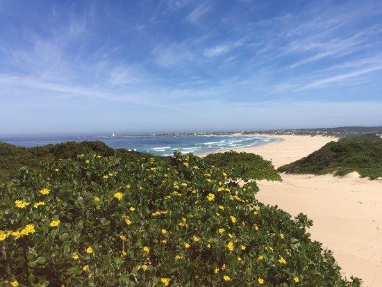 Cape St Francis