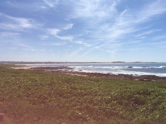 Cape St Francis 사진