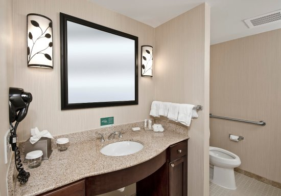 Homewood Suites Atlanta I-85-Lawrenceville-Duluth:  Accessible Bathroom
