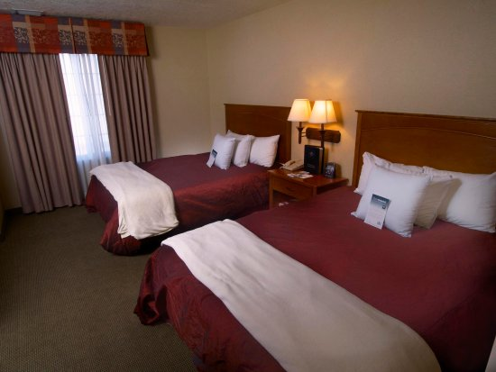 Homewood Suites by Hilton Albuquerque - Journal Center : Double Queen Deluxe