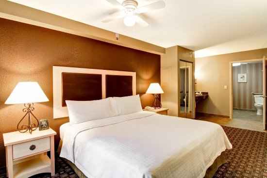 Homewood Suites by Hilton Austin-Arboretum / NW : King Accessible Bedroom