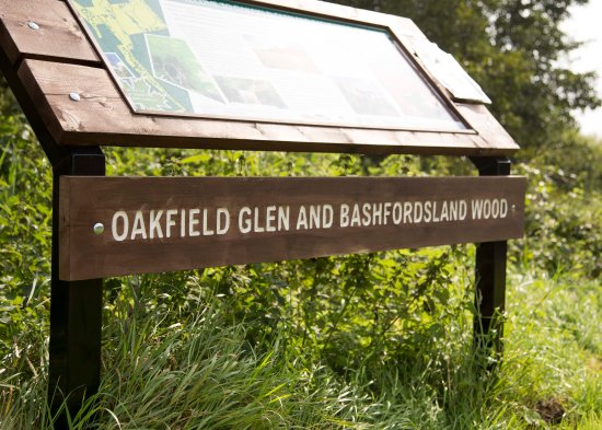 ‪Bashfordsland Wood and Oakfield Glen‬