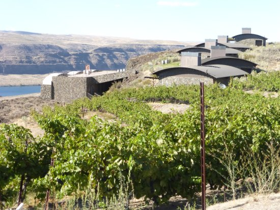 Quincy, WA: view of Cliff houses and Cavern rooms