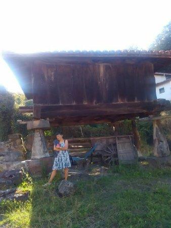 Hostel Albergue de Columbiello