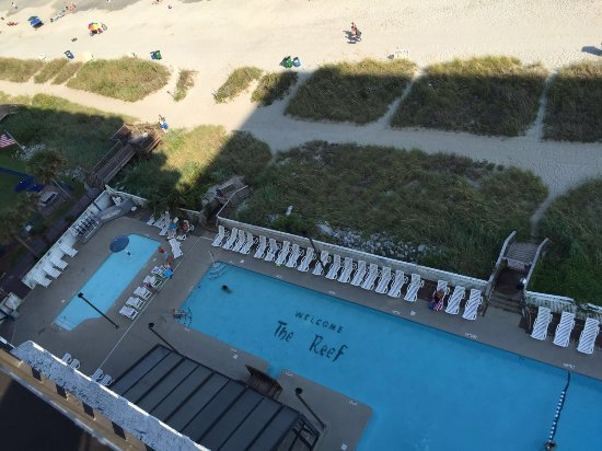 The Reef at South Beach: Pool