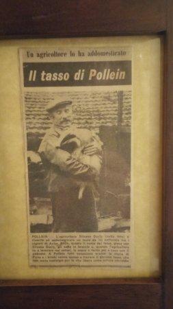 Pollein, Itália: Il perchè del nome