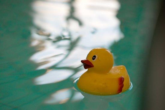 Falun, السويد: Scandic Lugnet Falun Pool