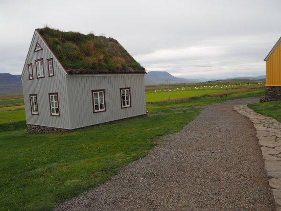 Freilichtmuseum Árbæjarsafn: Casa restaurante con techo de plantas