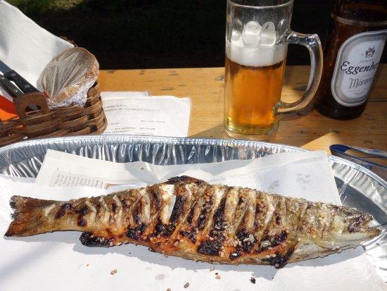 Altmunster, Austria: Fischer in der Wies, Altmünster