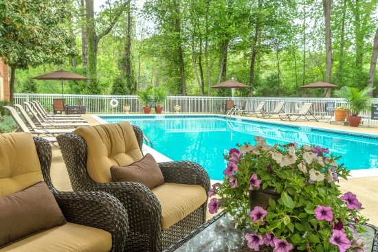 Holiday Inn Charlottesville-Monticello: Swimming Pool