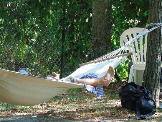 Libolla, Italia: Nel parco è possibile rilassarsi sull'amaca