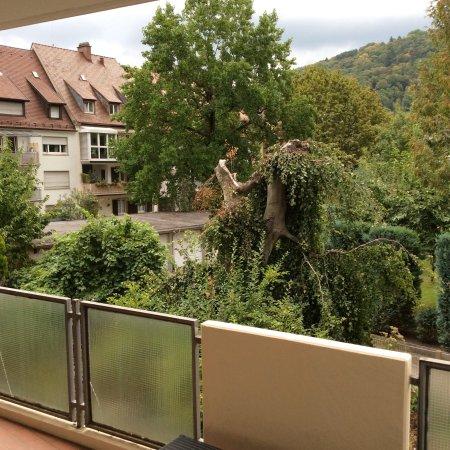 Zimmer im haus a picture of designhotel am stadtgarten for Designhotel stadtgarten freiburg
