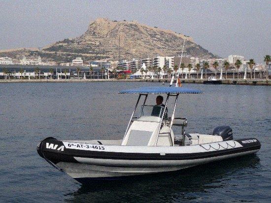 Charter Alicante W4