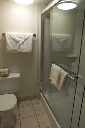 Twin Pine Motor Inn: Bathroom With Showerstall