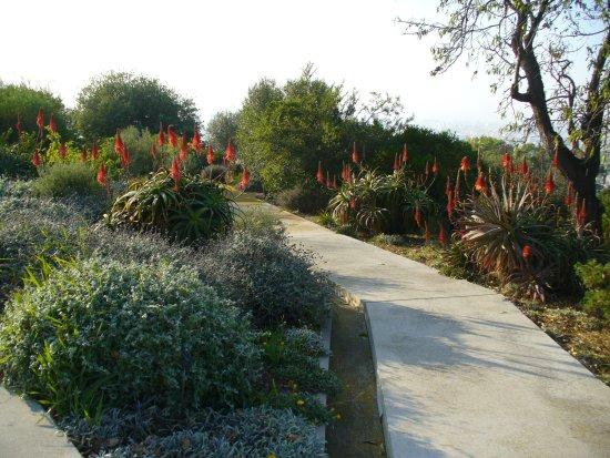 Jardín Botánico de Barcelona (Jardí Botànic de Barcelona): jardin botanique en décembre