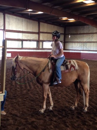 New Bloomfield, MO: Timberline Stables and Horse Boarding