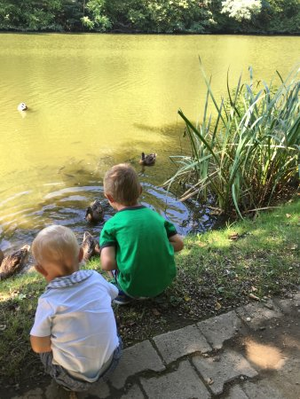 Three Ponds : photo0.jpg