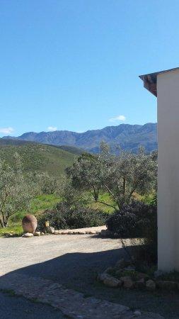 Robertson, Sudáfrica: 20160911_103515_large.jpg