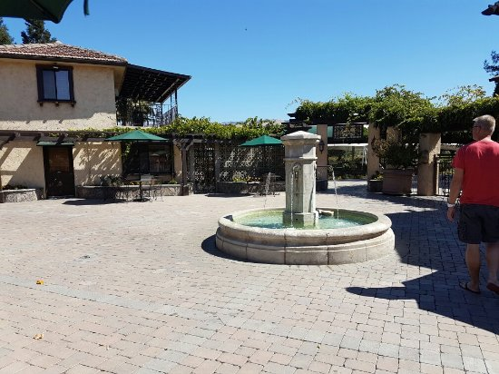 Guglielmo Winery: 20160915_120906_large.jpg