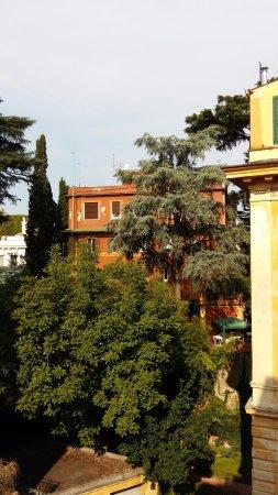 21 Aprile House : Vue depuis la fenêtre de notre chambre qui donnait sur des jardins, donc trés calme