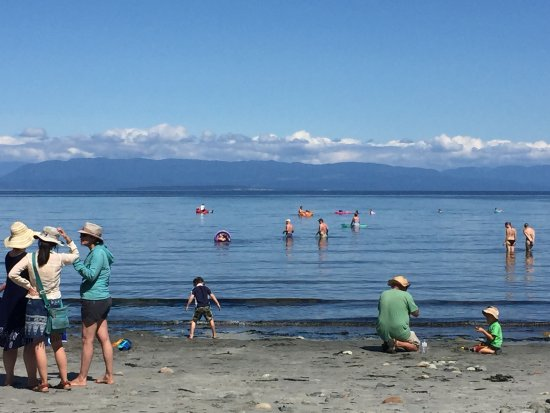 Courtenay, Canada: Water and mountains