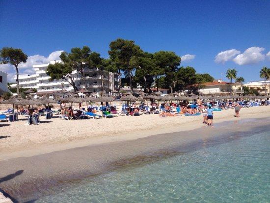 playa de muro forum