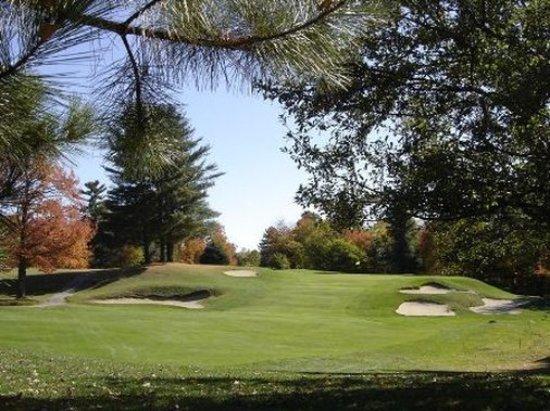 Wilton, ME: Golfing