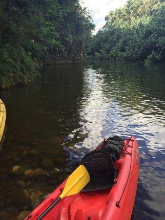 Wailua, Havaí: Stopping point for Secret Falls hike