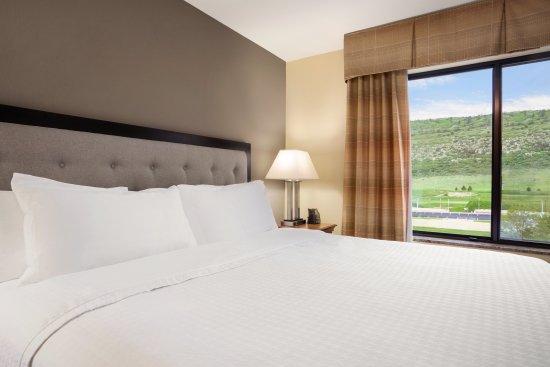 Homewood Suites by Hilton Denver Littleton: King Studio Suite