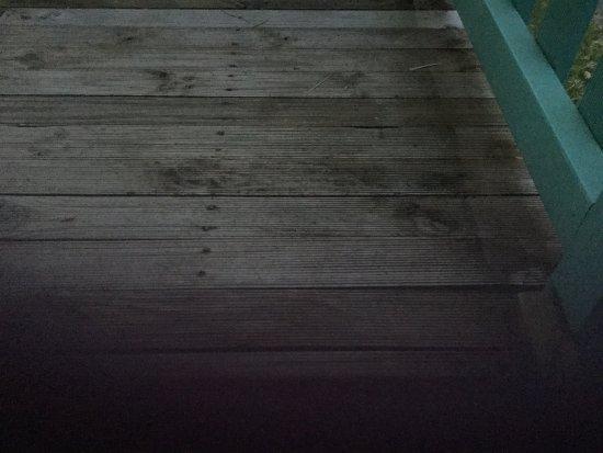 Sundowner Tiona : photo2.jpg