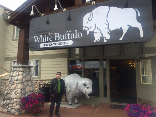 White Buffalo Hotel: White buffalo entrance - September 2016