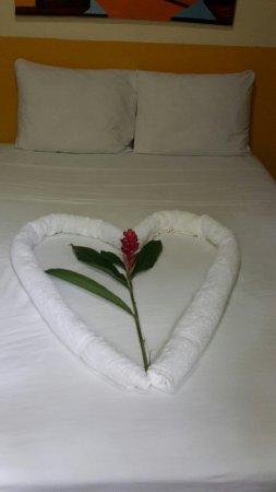 Hotel Casa Antigua: 20160915_135943_large.jpg