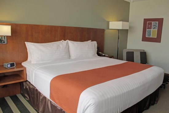 Holiday Inn San Jose-Escazu照片