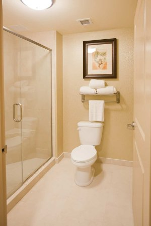 Homewood Suites by Hilton Lafayette-Airport, LA: Bathroom with shower
