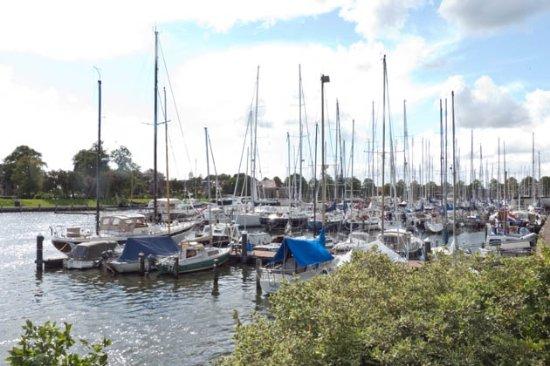 Pekelharinghaven
